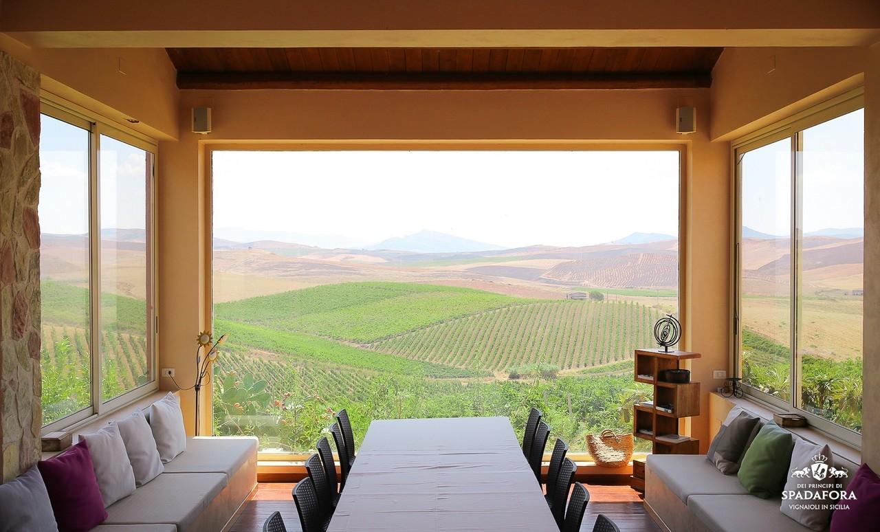 cantina-produzione-vino-biologico-dei-principi-di-spadafora