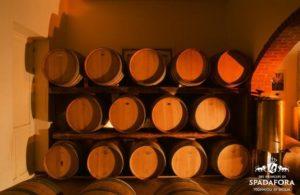 vendita-vino-bio-siciliano