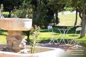 cantina-siciliana-produttrice-vino-biologico