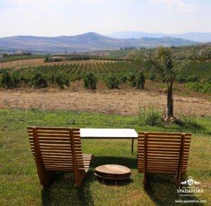 vendita online vero vino biologico siciliano